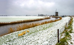 Snow on the bank of a rural river. Mill far in winter snow scene. Winter windmill farm on river snow