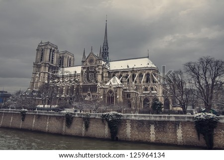Snow on the Notre Dame in Paris - stock photo