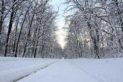 snow parks of Ukraine