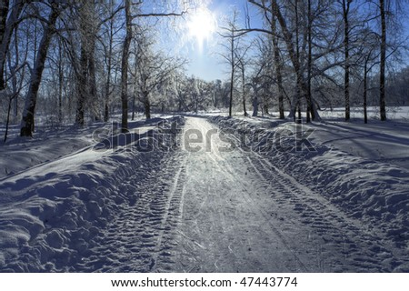 stock-photo-snow-path-in-a-frozen-park-and-sun-backlight-north-of-russia-47443774.jpg