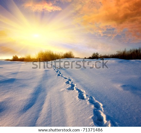 Snow-path in steppe in evening time
