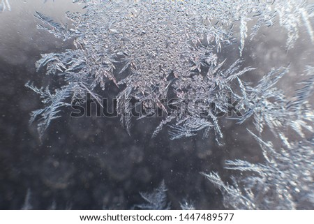snow pattern on the glass from frost #1447489577