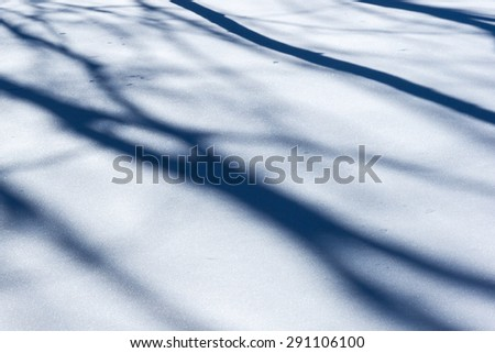 Snow pattern structure. Shadows of trees on the snow surface. Play of light and shadow
