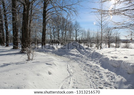snow road in the winter forest #1313216570