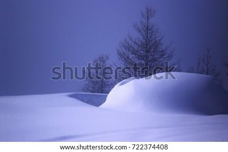 snow scape #722374408
