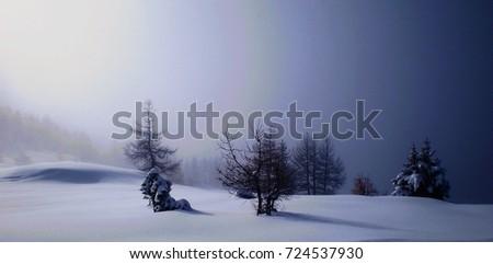 snow scape #724537930