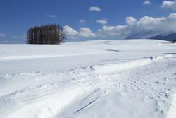 Snow scene in Japan