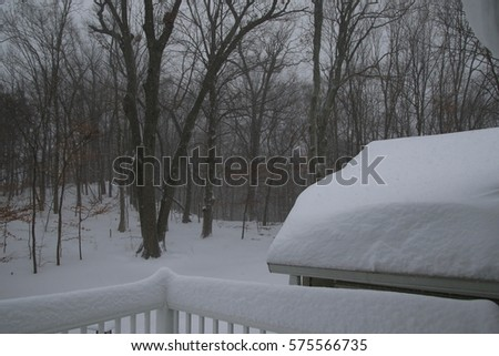 Snow, Snow and More Snow #575566735