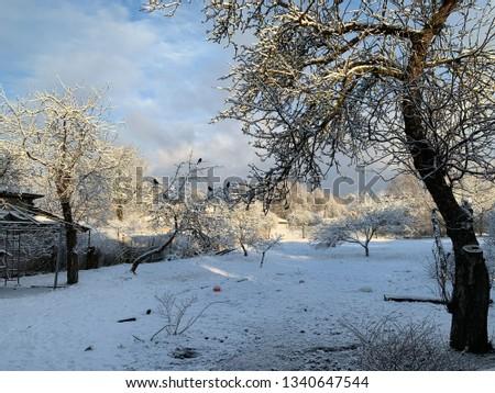 Snow snow is snow #1340647544