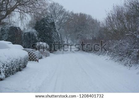 snow snow snow #1208401732