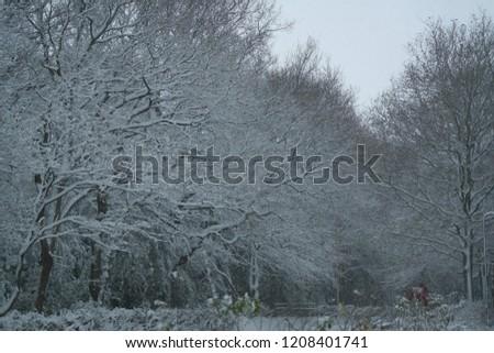 snow snow snow #1208401741