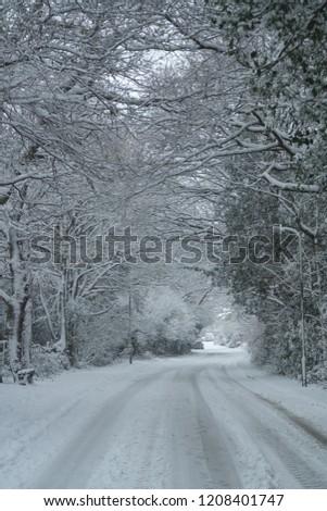 snow snow snow #1208401747