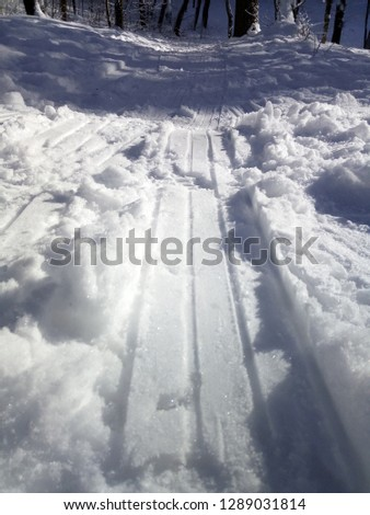 Snow snow snow #1289031814
