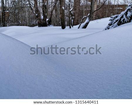 Snow Snow Snow #1315640411