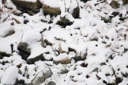 Snow stone in white pattern background
