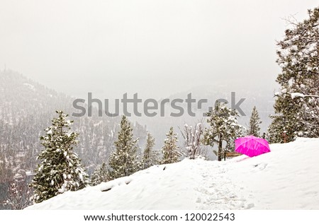 Snow storm from the top of a mountain in idaho, grey scene with a bright pink umbrella