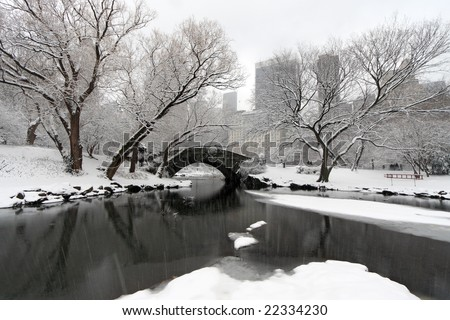 Snow storm in Central Park at Gapstow bridge
