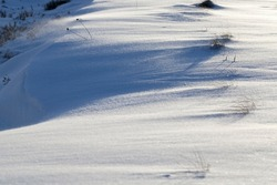 snow that fell during a snowfall and dry grass, snowfall in winter and white fluffy cold snow and grass, grass and snow in winter