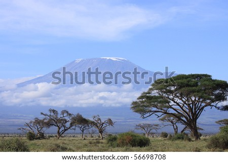 Snow topped Kilimanjaro framed by the open woodland of Amboseli