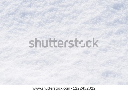 Snow white texture winter background of fresh cold ice, snowy icy surface pattern of chill snowflake in February freezing weather climate season