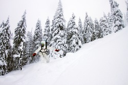 Snowboarder doing jump on hill - winter forest