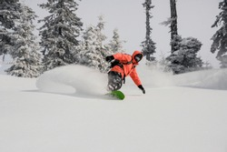 Snowboarder dressed in orange sportswear riding down the powder mountain hill among fir trees on cloudy day. Snowboarding in Georgia, Goderdzi