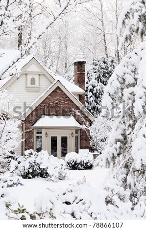 Snowbound house, seemingly buried,  the morning after a snowstorm