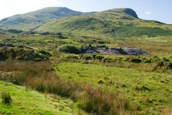 Snowdonia, north Wales. Mountain landscape with fields of gorse and heather with distant dramatic mountains.  Rugged scenery on a bright summer day.  Blue sky and copy space.