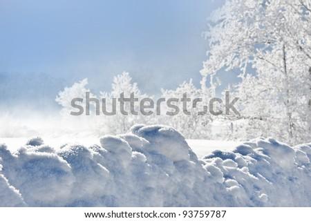 snowdrift and frozen trees