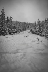Snowdrifts on a hiking trail in Tatra Mountains, Poland. Vertical monochrome scene of a dark wintry morning. Selective focus on the forest in the distance, blurred background.