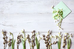 Snowdrops, pussy willow branches and an envelope with spring flowers on a white wooden background, space for text.