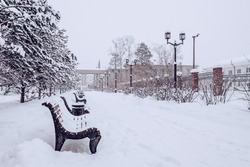Snowfall in city park, blizzard and cold weather concept. Snow-covered trees, lanterns and benches in the city park.