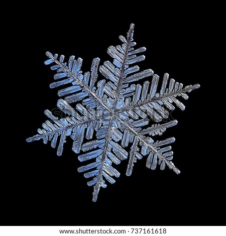 Snowflake isolated on black background. Macro photo of real snow crystal - large stellar dendrite with fine hexagonal symmetry, six long, elegant arms with lots of side branches and glossy surface. #737161618