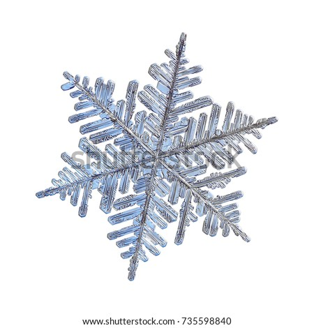 Snowflake isolated on white background. Macro photo of real snow crystal: large dendrite  with six long, elegant arms, lots of side branches and complex, ornate shape. #735598840