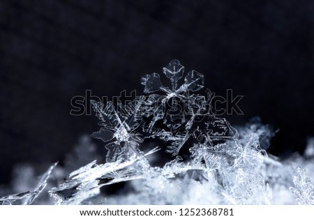 snowflake, little snowflake on the snow #1252368781