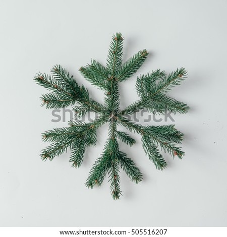 Snowflake made of Christmas tree branches. Flat lay. Winter concept.