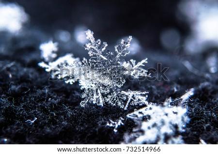 snowflakes #732514966