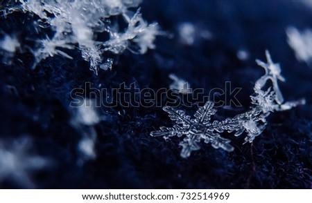 snowflakes #732514969