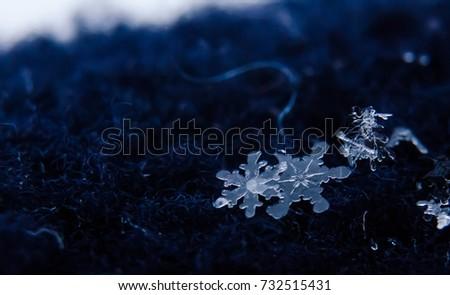 snowflakes #732515431