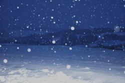 snowflakes falling in evening light, winter scene