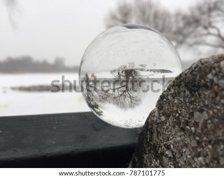 Snowglobe with trees