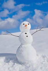 Snowman on nature in sunny cold day