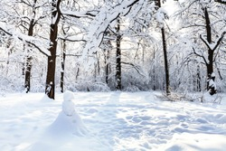 snowman on snow-covered meadow in oak grove of Timiryazevskiy forest park of Moscow city in sunny winter morning