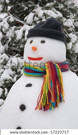 Snowman wearing colorful scarf