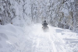 Snowmobile driving on a narrow trail in a snowy forest on a bright winter day