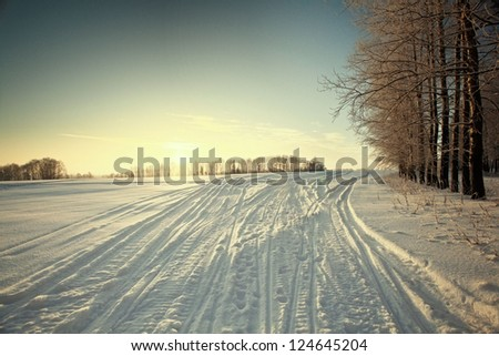Snowmobile tracks on the snow