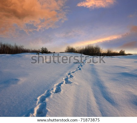 Snowpath in steppe in evening time