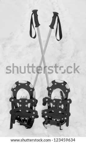 Snowshoes and hiking poles standing upright in the snow