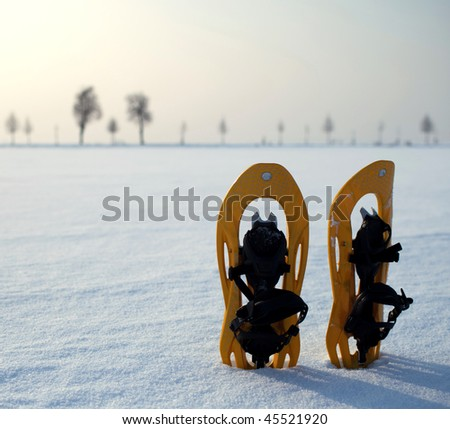 snowshoes in a snowy landscape on a lovely yet frosty winter day
