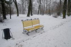 Snowy Bench in Winter